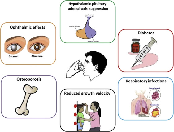 Inhaled Corticosteroids Safety and Adverse Effects in ...